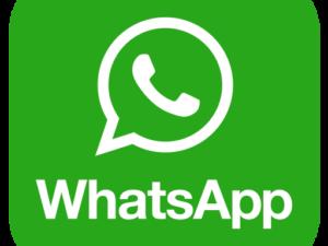 Lamezia Multiservizizi spa: smaltimento rifiuti ingombranti e frazione verde , attivo il numero WhatsApp.